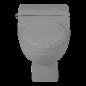 توالت فرنگی ارکید چینی کرد