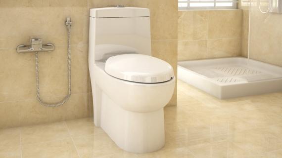 توالت فرنگی کرد